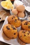 Queques dos pedaços de chocolate com ingredientes Imagem de Stock Royalty Free