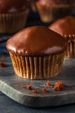 Queques escuros caseiros do chocolate Imagem de Stock Royalty Free