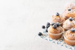 Queques ou queques dos mirtilos na textura branca fotografia de stock royalty free