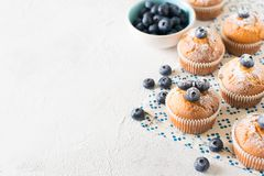 Queques ou queques dos mirtilos na textura branca fotografia de stock