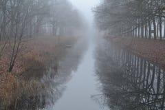 Querce americane lungo il Apeldoorns kanaal Immagine Stock Libera da Diritti