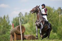 Querfeldein Tragendes Pferd mit einem plötzlichen Halt Lizenzfreie Stockfotos