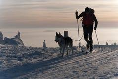 QuerfeldeinSkifahrer mit Hund lizenzfreie stockfotos