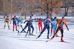 Querland-Ski-Rennen Lizenzfreie Stockbilder