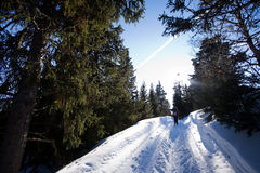 Querland-Skifahren lizenzfreies stockbild
