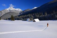 Querland-Skifahrer in den Tatry Bergen Lizenzfreies Stockfoto