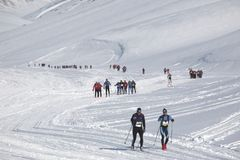 Querland-Skimarathon Svalbard-Marathon lizenzfreie stockbilder