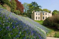 Querneigung von Bluebells und von Landhaus Lizenzfreies Stockbild
