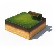 Querschnitt Boden mit dem Teil Rasen lokalisiert auf Weiß Lizenzfreie Stockbilder
