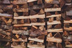 Querschnitt des Bauholzes Stockbild