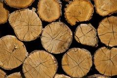 Querschnitt des Bauholzes Ein Stapel trockenes Brennholz gespeichert für für Winter Stockbilder