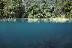 Querschnitt des Unterwasser- und Überwasserteils des Sees lizenzfreies stockbild