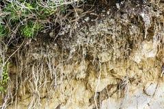 Querschnitt Hosen und horizontaler Hintergrund des Bodens lizenzfreie stockfotos