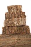 Querschnitte des Baumstammes lokalisiert auf weißem Hintergrund Lizenzfreie Stockfotos