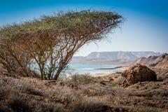 Queshm landscape Royalty Free Stock Images