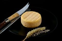 queso de la Cabra-leche en la placa negra Fotos de archivo
