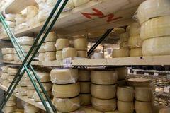 Queso de la leche de vaca, almacenado en estantes de madera y dejado para madurar a Imagen de archivo
