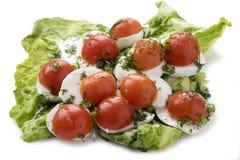 Queso de la mozzarella con los tomates imagen de archivo libre de regalías