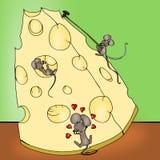 Queso de los ratones Imagen de archivo