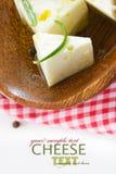 Queso de queso Feta imágenes de archivo libres de regalías