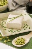 Queso de soja Imagen de archivo