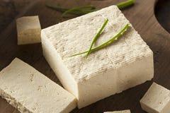 Queso de soja crudo orgánico de la soja Imagenes de archivo