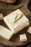 Queso de soja crudo orgánico de la soja Foto de archivo libre de regalías