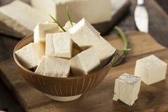 Queso de soja crudo orgánico de la soja Imagen de archivo