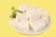 Queso de soja vegetariano Imágenes de archivo libres de regalías