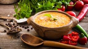 Queso de Sope com os vegetais no fundo de madeira Imagem de Stock