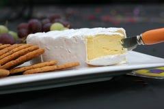 Queso del camembert en el disco Foto de archivo