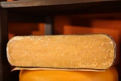 Queso delicioso en la tienda, primer imagenes de archivo