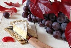 Queso francés Coulommiers el biscote curruscante, las uvas rojas y el otoño l Imagen de archivo