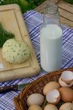 Queso fresco del huevo – menú especial para Pascua Imagen de archivo libre de regalías