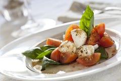 Queso fresco del tomate y de la mozarela Fotografía de archivo libre de regalías