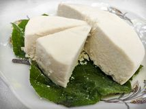 Queso fresco served on a natural leaf. royalty free stock images