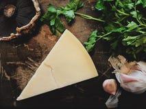 Queso parmesano Imagen de archivo libre de regalías