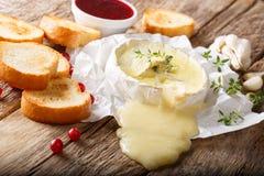 Queso picante derretido del camembert con ajo, tomillo y el aceite de oliva c Imagenes de archivo