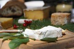 Queso suave francés (fromage), pan francés de las pasas (groseilles) (dolor) y mostaza (moutarde) de la región de las Rhone-monta Foto de archivo libre de regalías