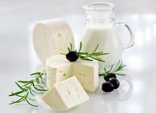 Queso suave sano del paneer con romero y aceitunas negras Imagen de archivo libre de regalías