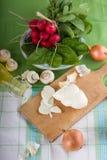 Queso tradicional del slovak con la verdura y las setas Fotografía de archivo