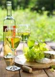 Queso, uvas y dos vidrios del vino blanco Foto de archivo