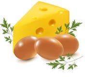 Queso y huevos con perejil. Fotografía de archivo