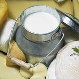 Queso y leche Imagenes de archivo