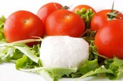 Queso y tomate de la mozarela Fotografía de archivo
