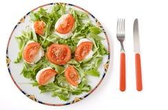 Queso y tomate de la mozarela Foto de archivo libre de regalías