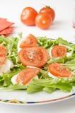 Queso y tomate de la mozarela Imagen de archivo libre de regalías