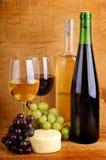 Queso y vino Foto de archivo libre de regalías