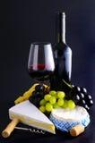 Queso y vino franceses Imagen de archivo libre de regalías