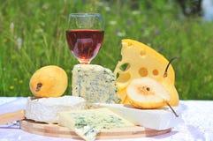 Queso y vino nobles Foto de archivo libre de regalías